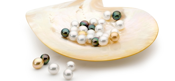 Pearls in shell